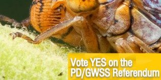 Wine and Growers Organizations Across the State Line Up in Support of a YES Vote on the PD/GWSS Referendum