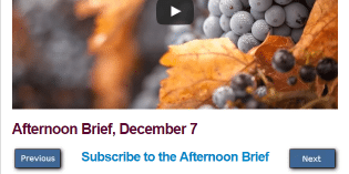 Afternoon Brief, December 7
