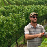 New Jersey Wine In Pursuit of Excellence