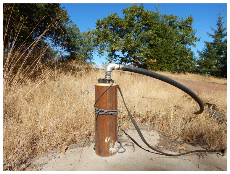 Using well water for irrigating cannabis is common statewide, the study found. Photo by Chris Dillis
